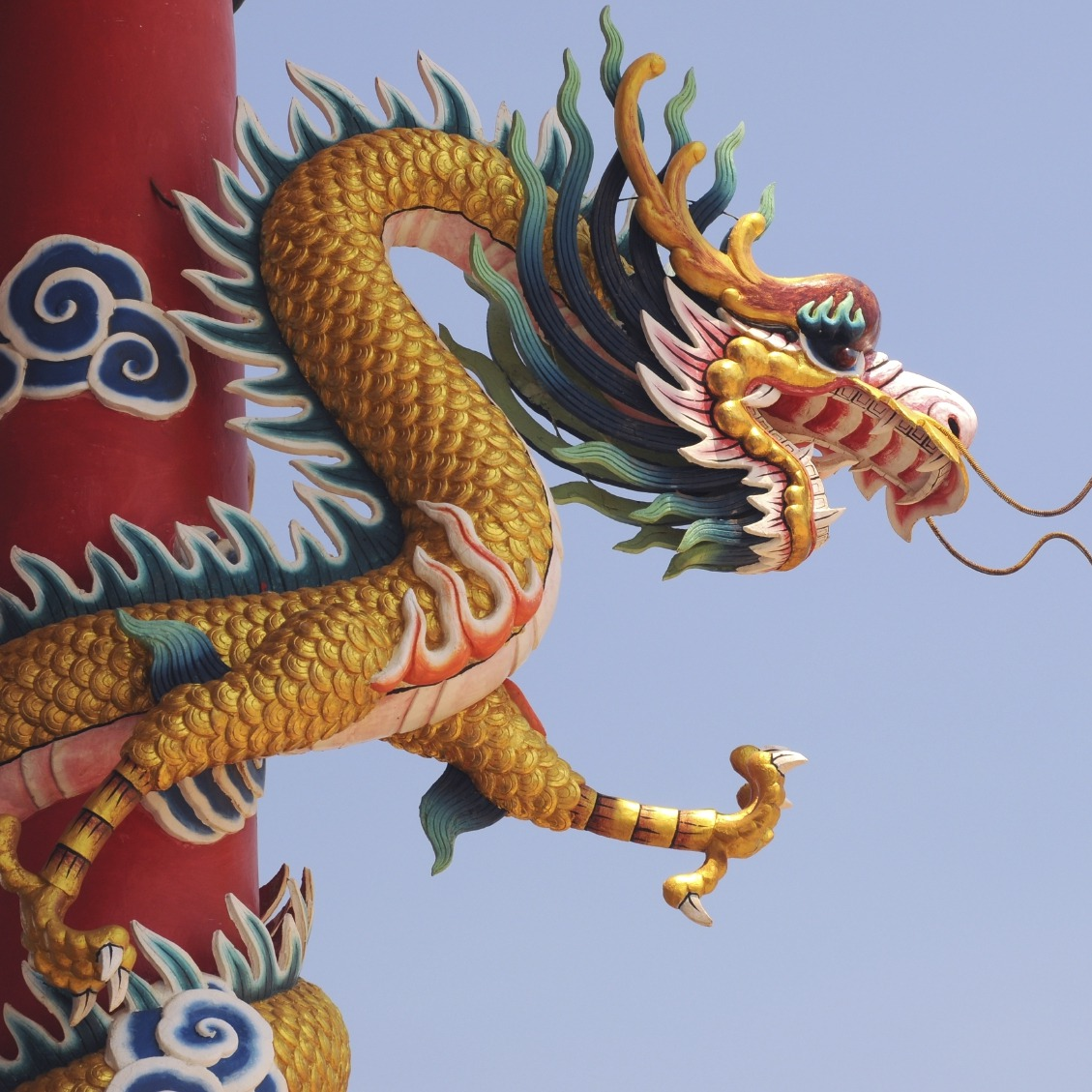 ChineseDragon-in-trading